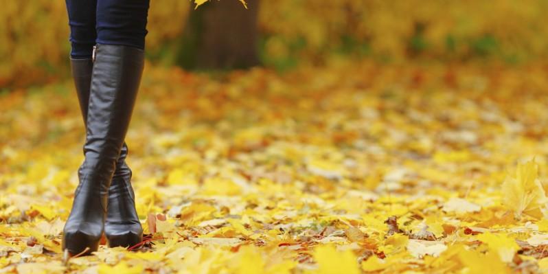 fallboots1.jpg
